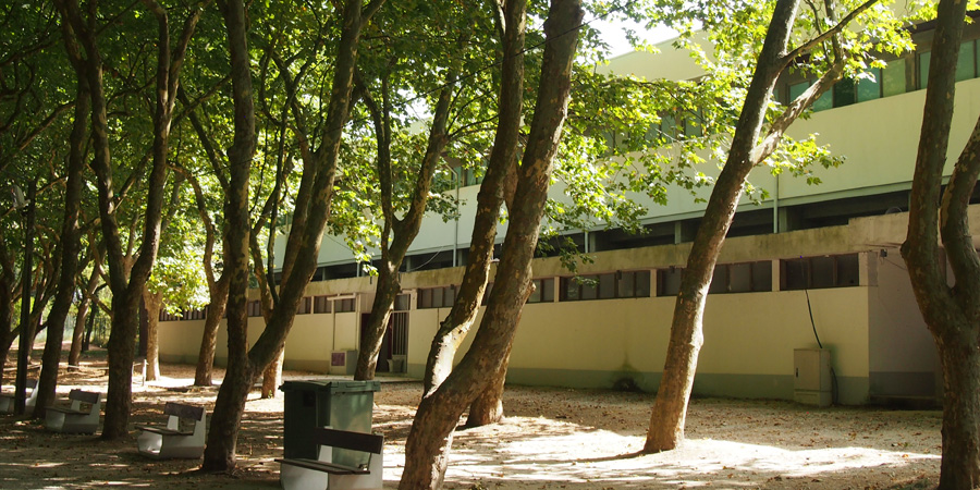 En av anläggningarna inne på Mata Rainha D. Leonor i Caldas da Rainha.